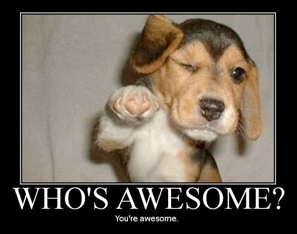 You're awesome! Yes, you are. Give yourself a pat on the back. Go on, don't be shy.