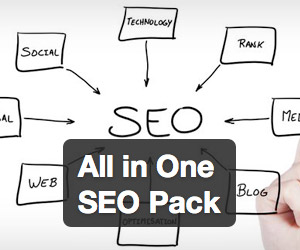 All in One SEO ack