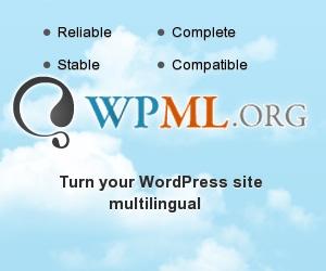 WPML banner image