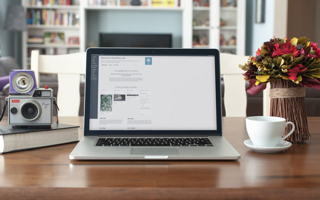 Easy WP Guide for WordPress 4.8 is now available